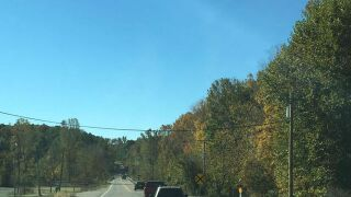 Planned Indiana state forest logging alarms opponents