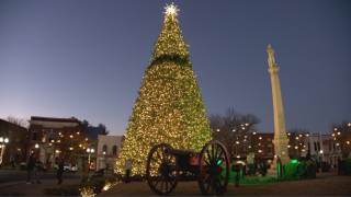 Franklin virtual tree lighting