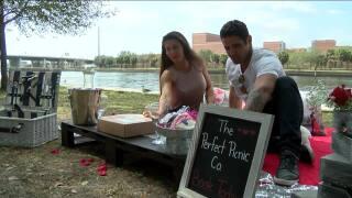 perfect picnic company-local business