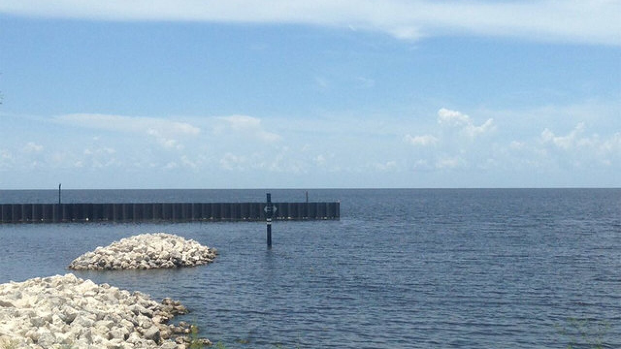 State says blue green algae in Lake Okeechobee is not toxic