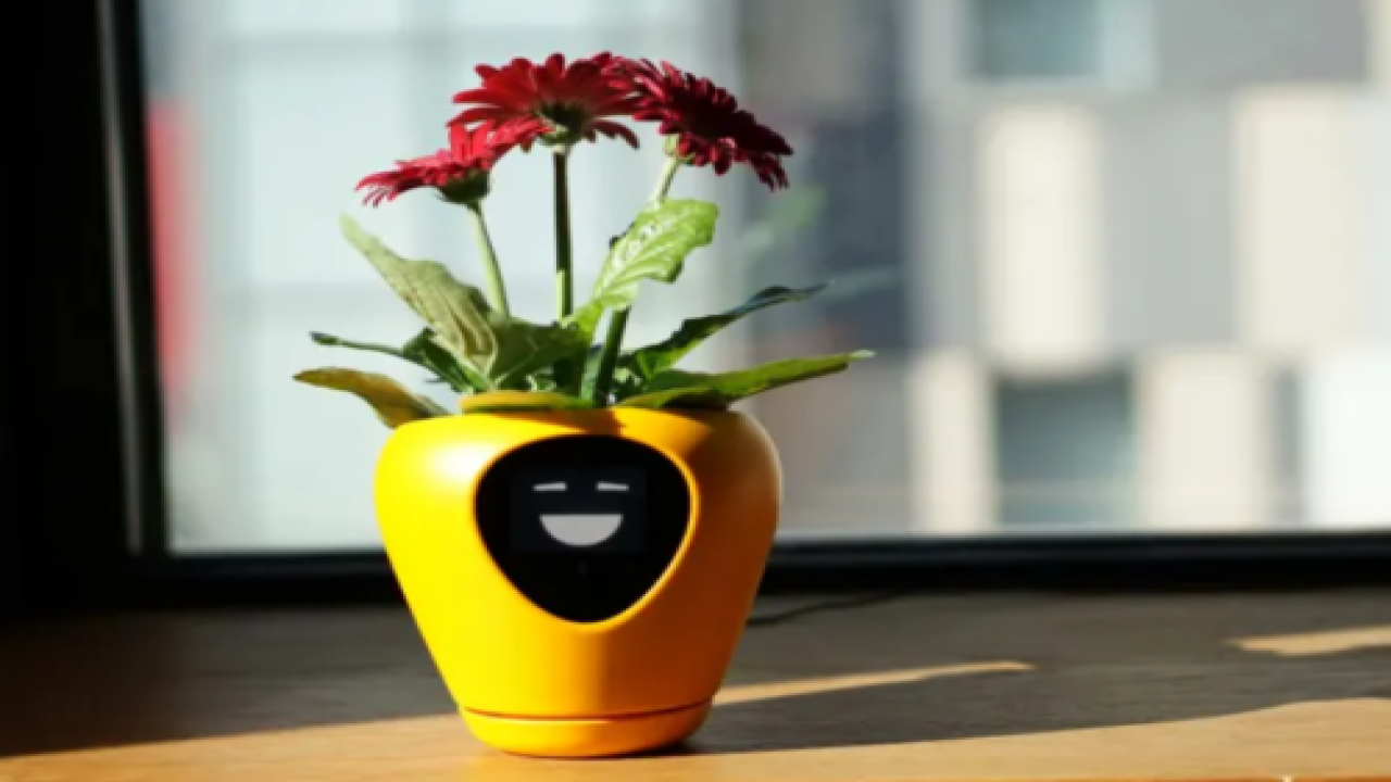 This Smart Planter Can Tell You Exactly What Your Plant Needs