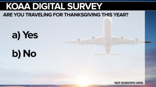 Thanksgiving Travel Survey