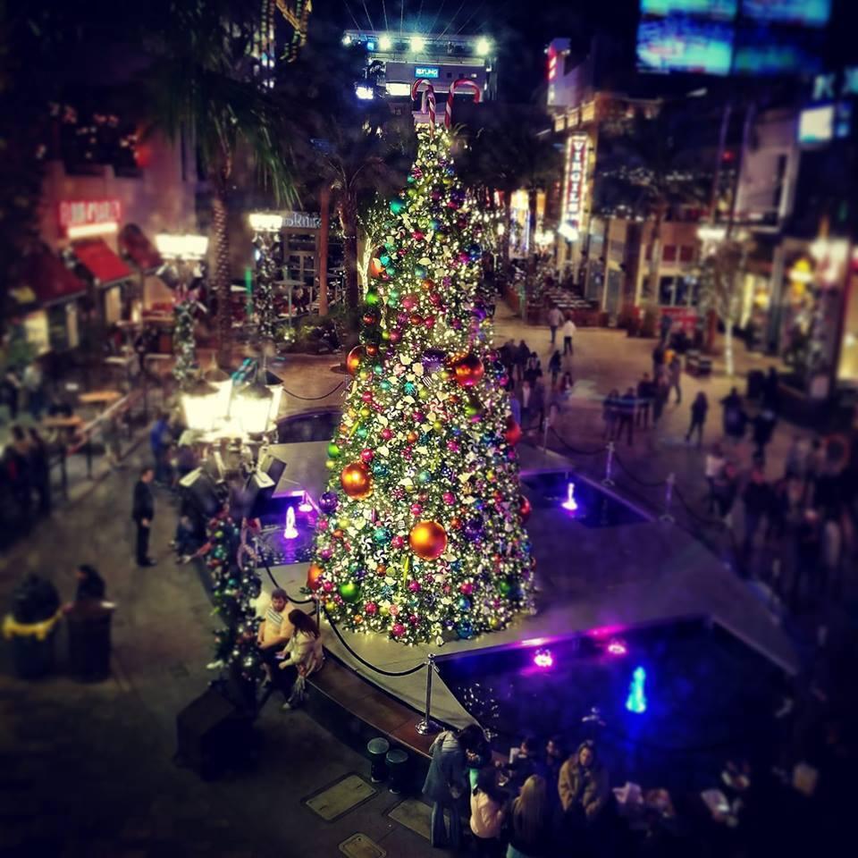 christmastreelinq.jpg