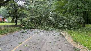 Tree down at 108th Avenue and 120th near Otsego in Allegan County 7/29/21