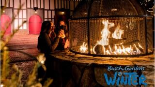 Busch Gardens Winter weekends edit.jpg