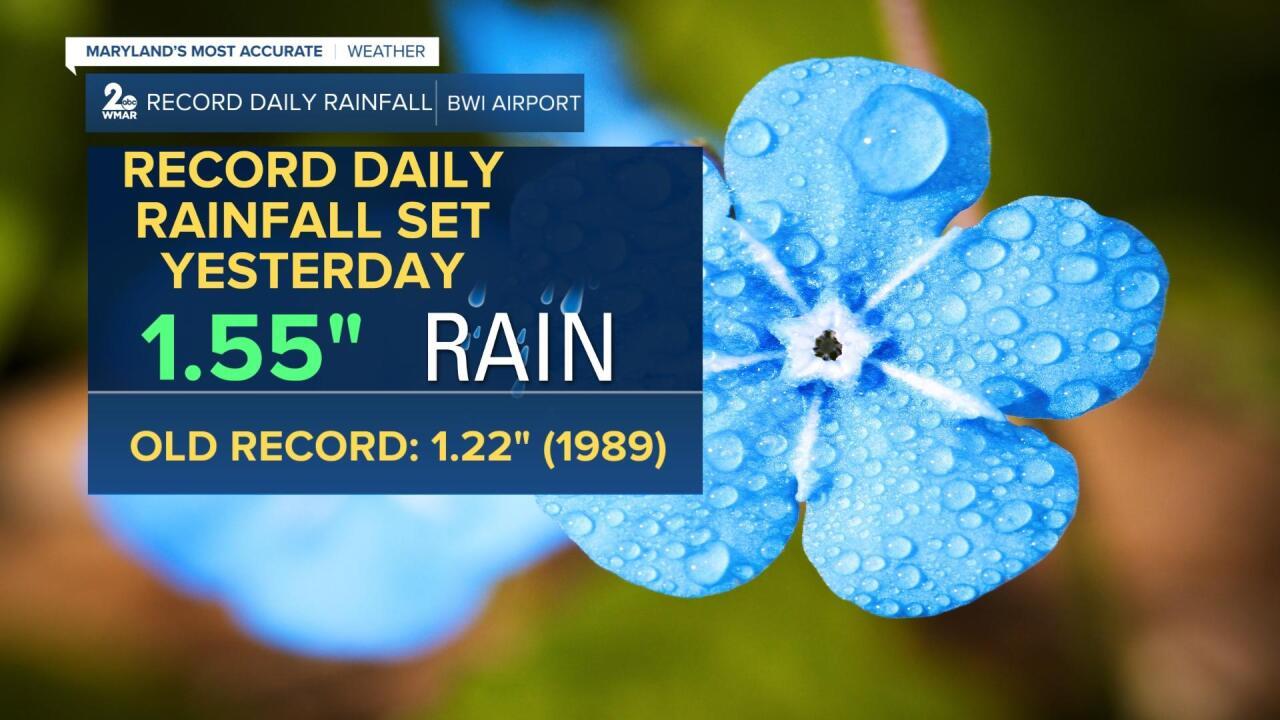 Record Rainfall.jpg