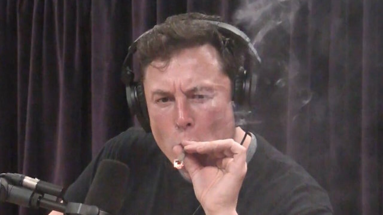 Tesla's stock plummets after Elon Musk's hazy appearance on Joe Rogan's podcast