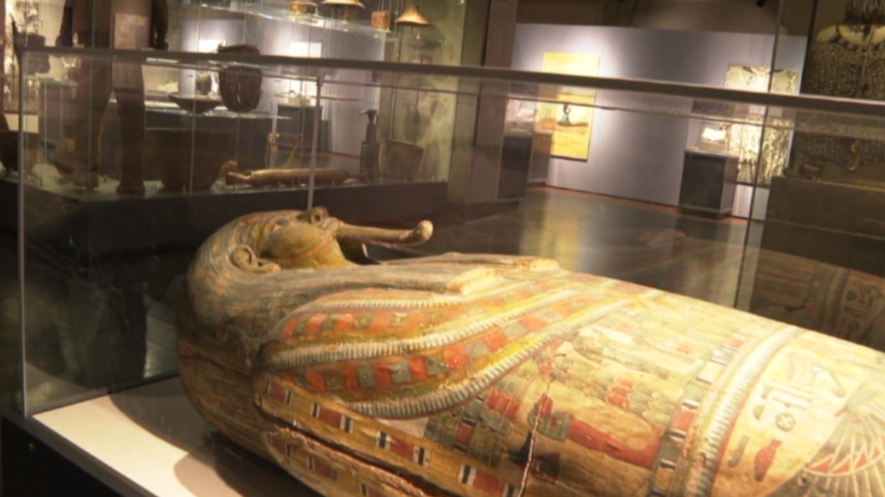 Want to see some mummies this weekend? Here's how you can find them at the Buffalo Science Museum