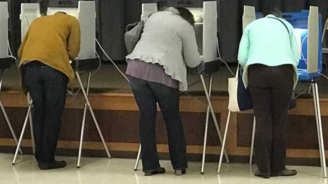 People voting in booths