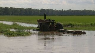 Flooded farm in St. Landry Parish.jpg
