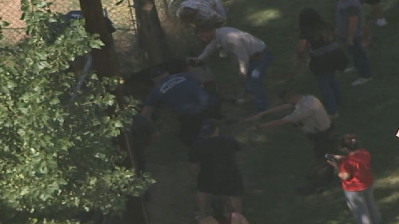 NOW: Horse stuck in Avondale canal