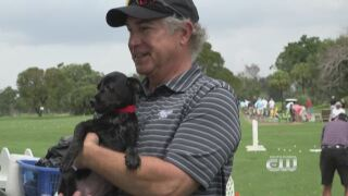 Furry Fix: Golfing For ACause