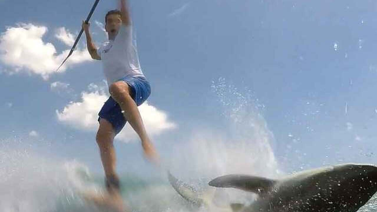 VIDEO: Jupiter paddleboarder encounters shark