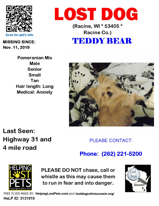 1111 Teddy Bear Pomeranian Senior.png