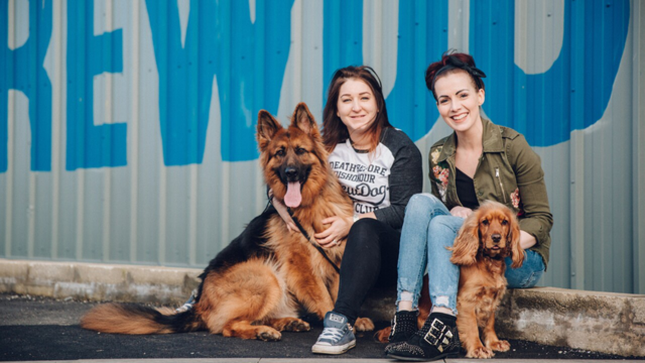 BrewDog will offer 'paw-ternity' to its employees