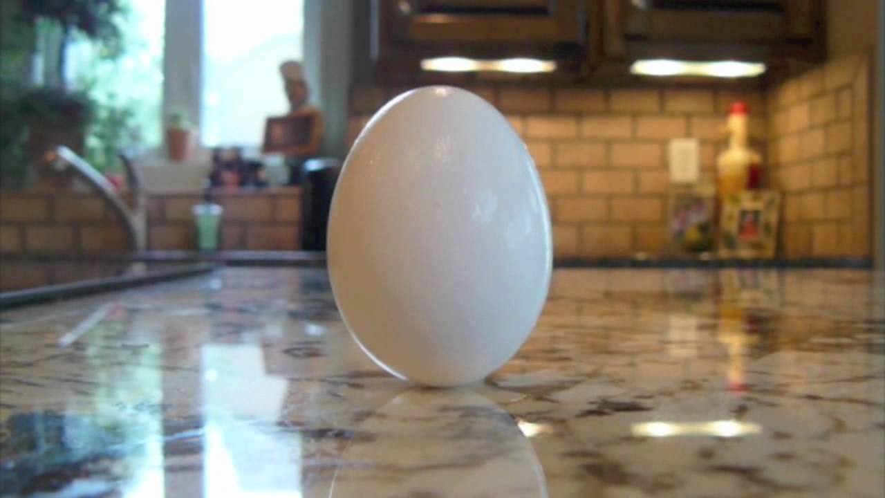 egg on tip.jpg
