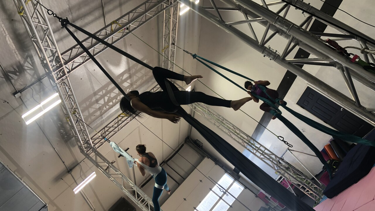 Cloud Nine Aerial Arts