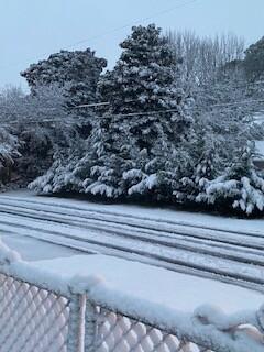 Charla Kempsville Road in Norfolk.jpg