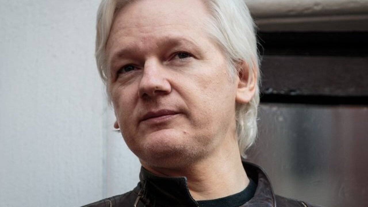 Julian Assange: Court filings cite US charges against WikiLeaks founder