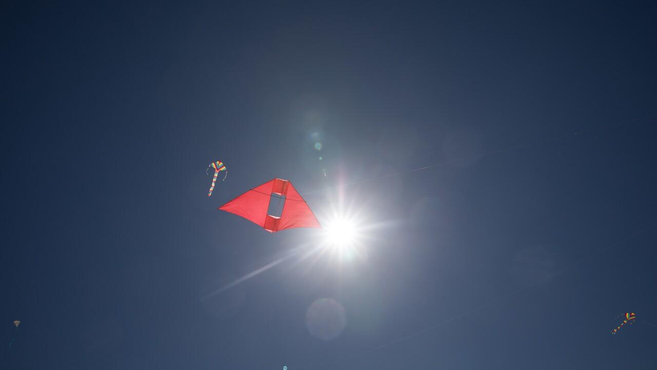 Festival Of The Winds Kite Festival Bondi