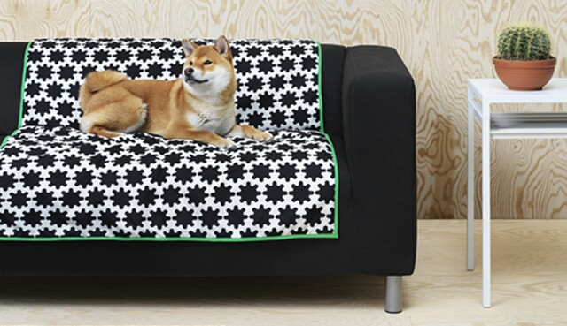 IKEA is catering to your furry friend with a funky new pet furniture line