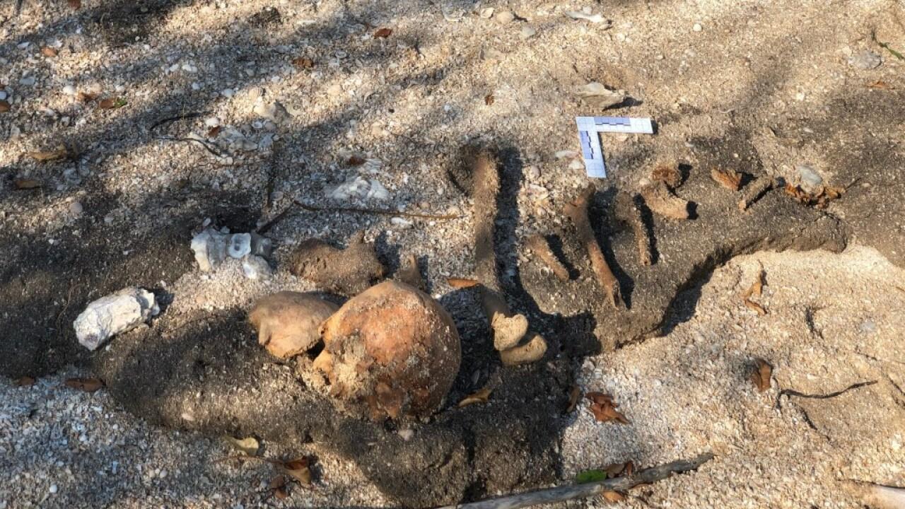 Fisherman makes gruesome discovery on Hog Island