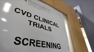 UMB CVD STUDY.jpg