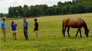 (Second from right)Ray Smith, UK forage extension specialist, speaks with (from left) Keith Haag; Krista Lea, UK Horse Pasture Evaluation Program coordinator; and Laura Haag during a visit to Endeavor Farm. Photo courtesy of Katie Pratt.
