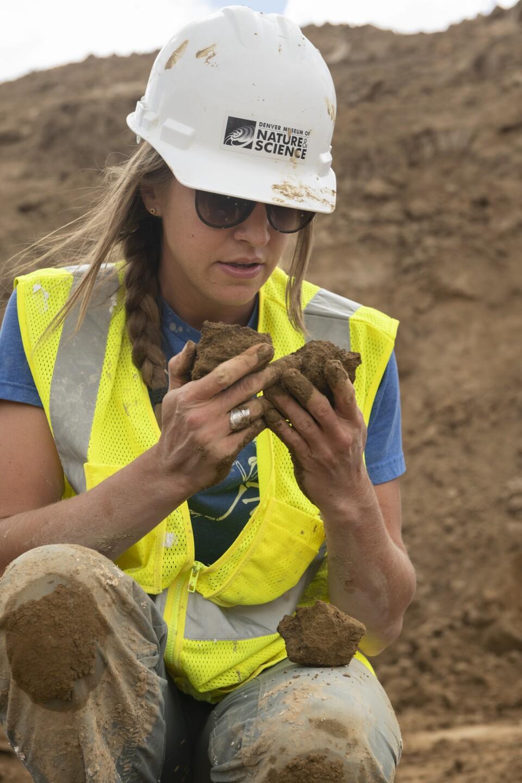 Highlands Ranch dino excavation