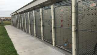 Corpus Christi Animal Care Service building closed to public