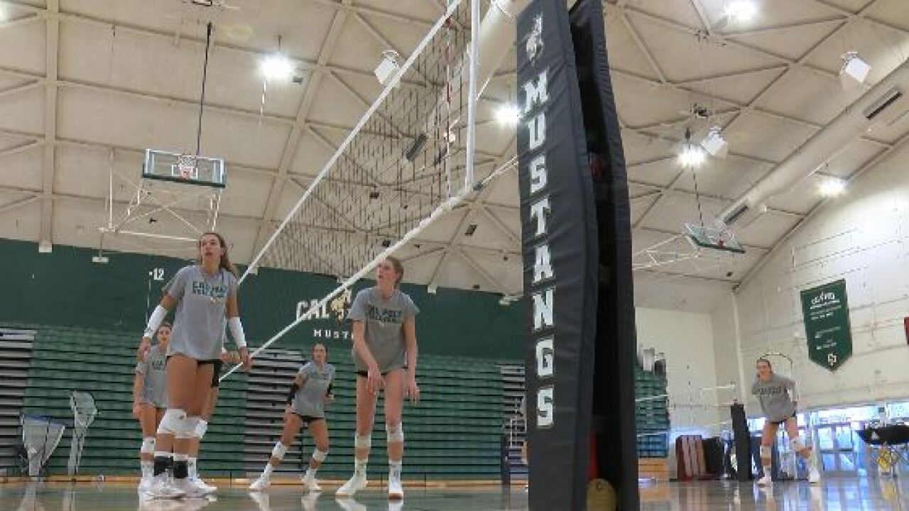 CAL POLY VOLLEYBALL.JPG