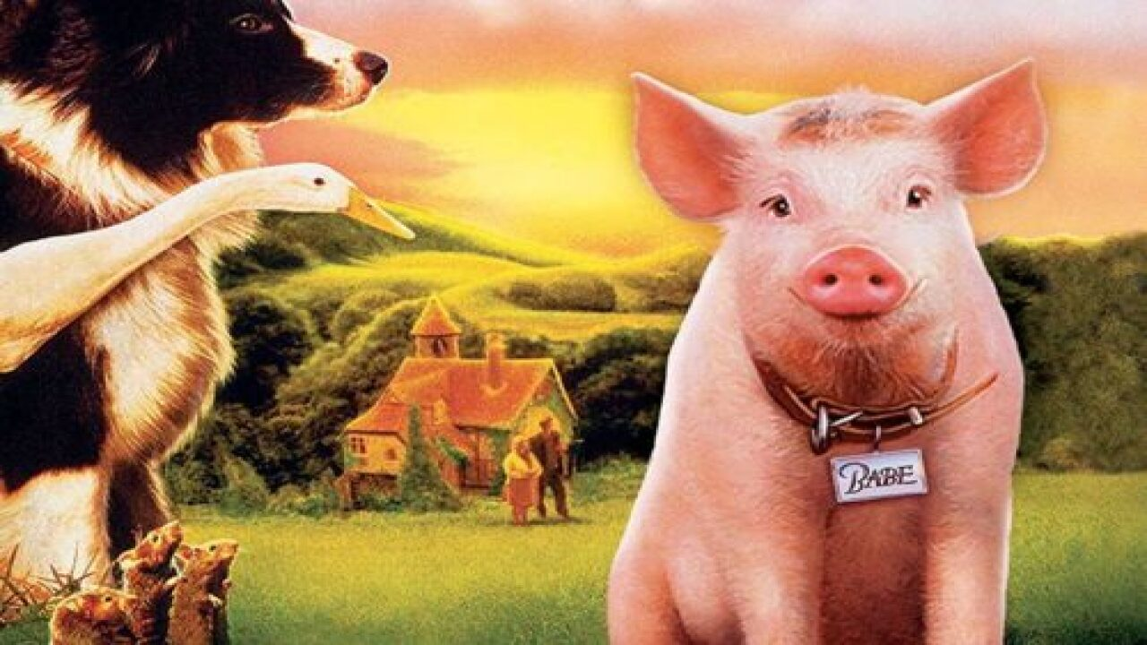 'Babe' Is Returning To Theaters For Its 25th Anniversary