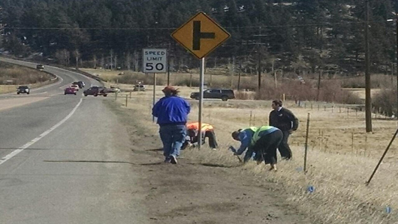Flags planted along Hwy. 285 to support police