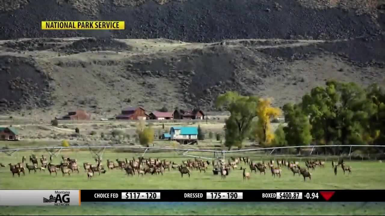 Montana Ag Network video (Friday, May 22)