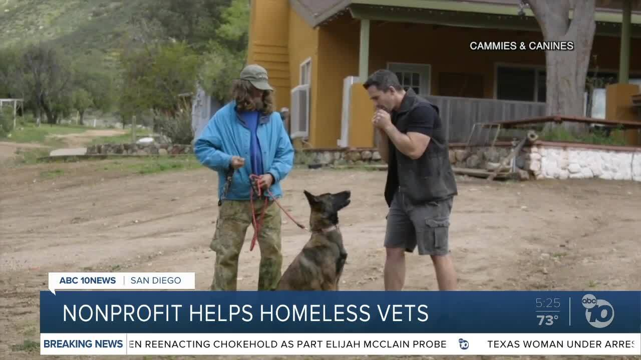 Veterans helping veterans with rescue dogs and respect