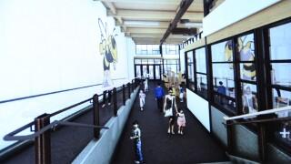 Stevensville School offer assurances on construction phasing
