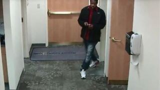 greenfield theft suspect.JPG