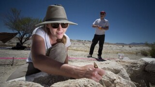 Becky Humphrey Excavation.jpg