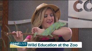 Virginia Zoo visits CoastLive