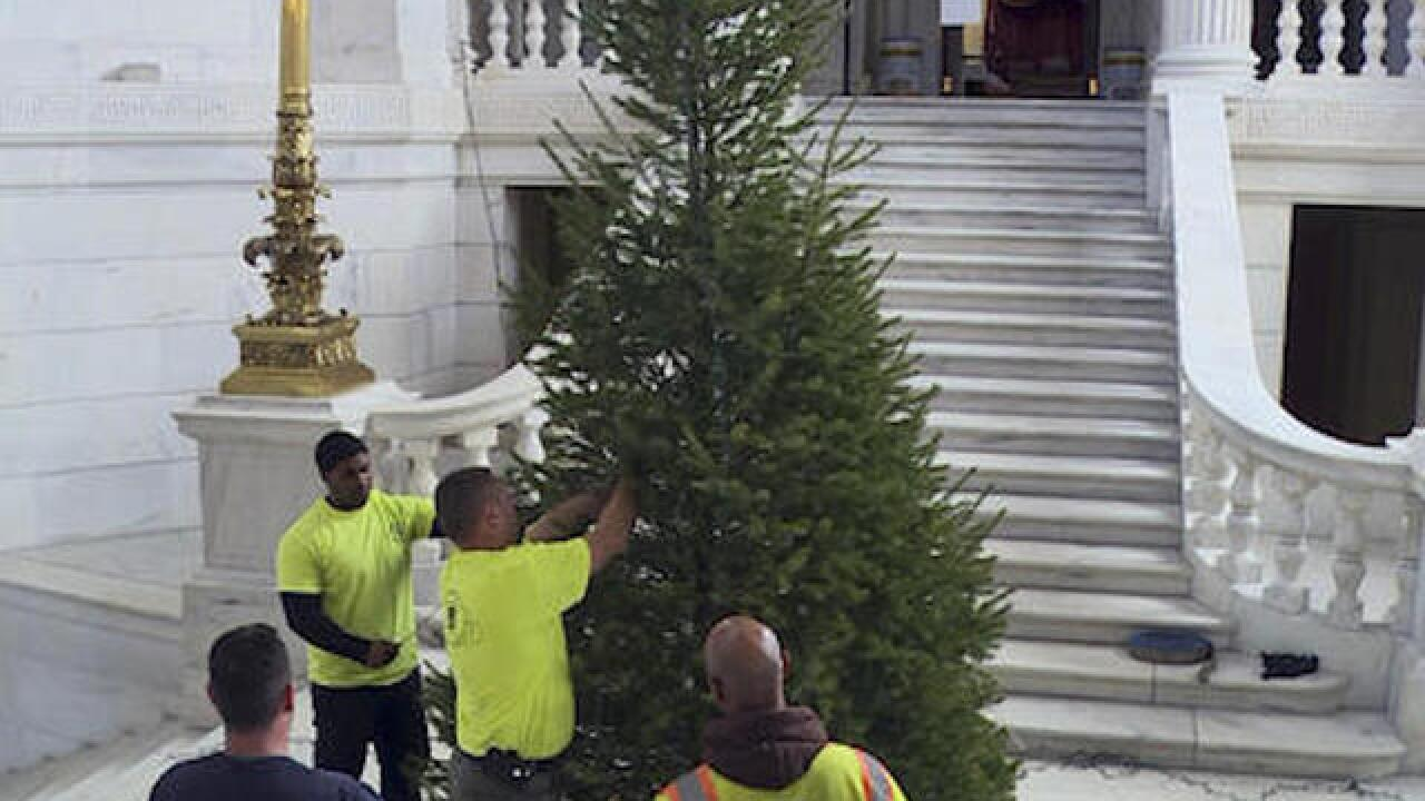 Statehouse Christmas tree deemed too puny, officials demand it to be replaced
