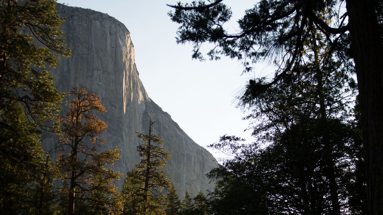 10-year-old Colorado girl may be youngest person in history to conquer Yosemite's El Capitan