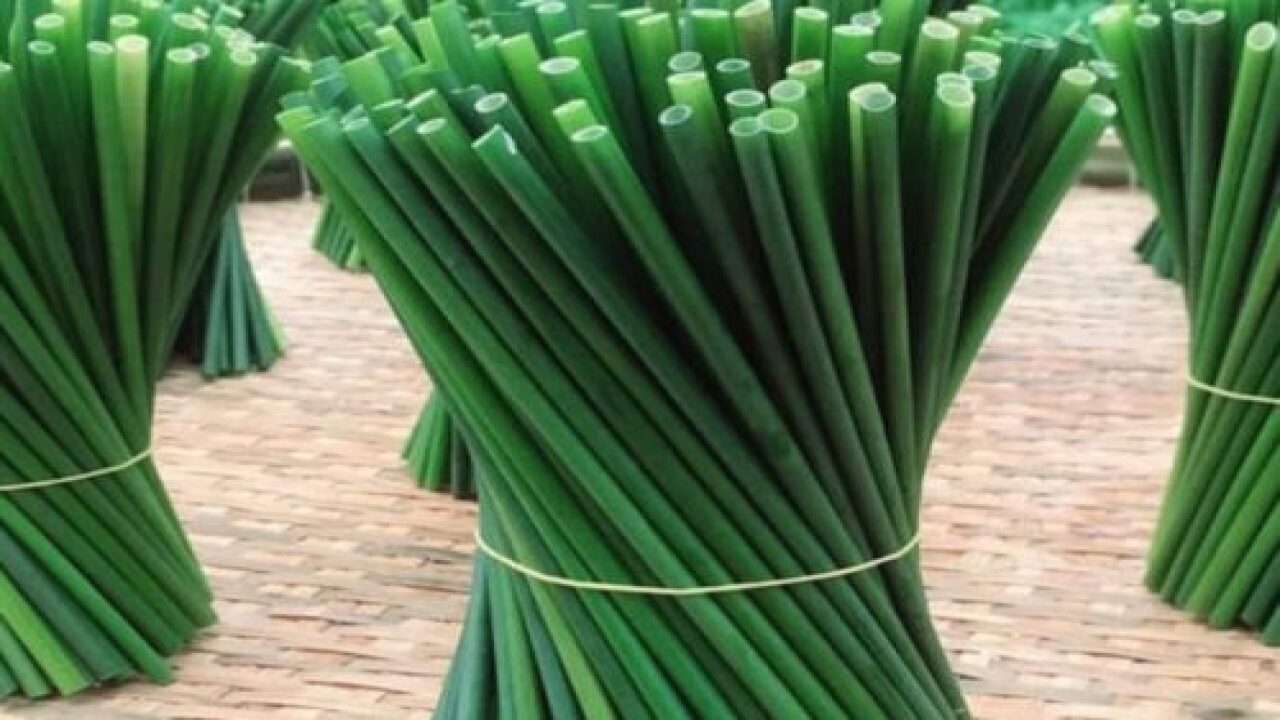 These Eco-friendly Grass Straws Decompose In Just 15 Days