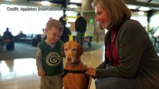 Appleton Intl Airport welcomes back therapy dogs