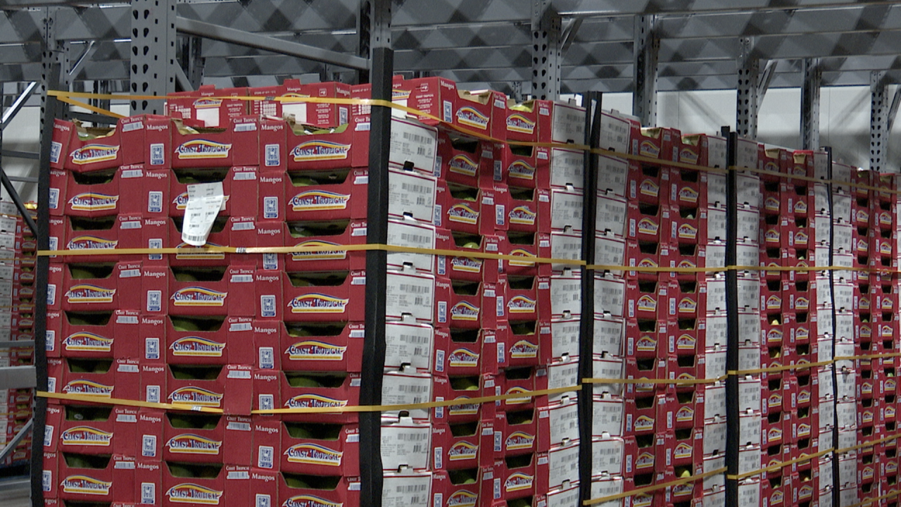 Boxes of mangos are stored inside a Nogales warehouse.