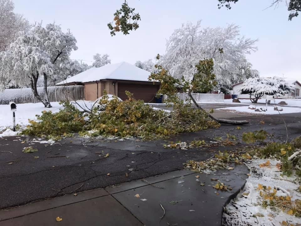 Pueblo west Loretta Greensweight.jpg