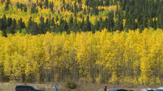 5 GREAT fall color hikes near Denver you'll love exploring