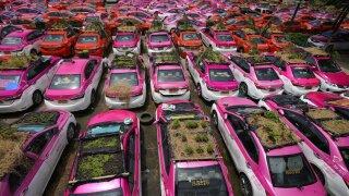 APTOPIX Thailand Taxi Gardens