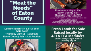 4-H Meat the Needs Auction