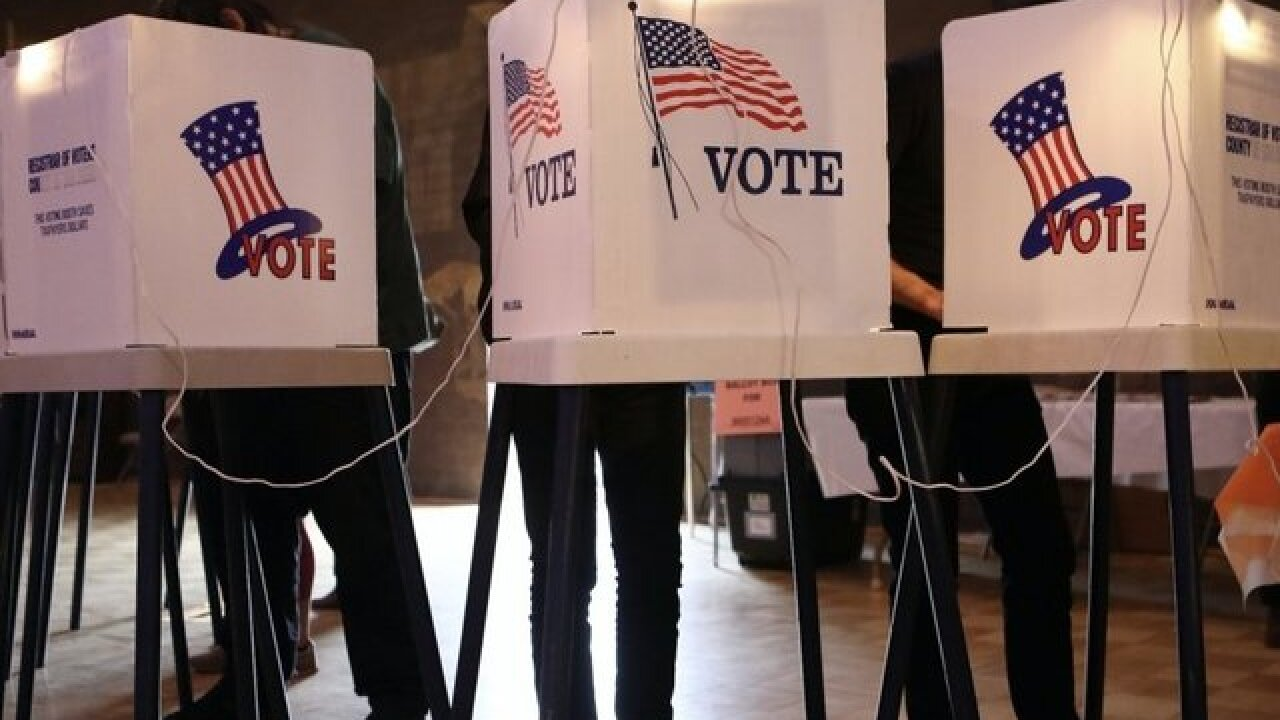 Voters experience delays in Redford Township