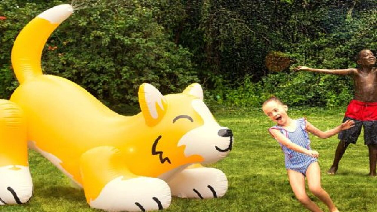 You Can Now Buy A Giant 5-foot Corgi Sprinkler That Shoots Water Out Of Its Tail